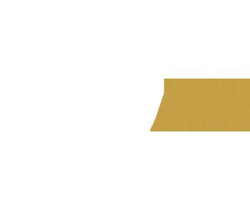 shopify-plus-white